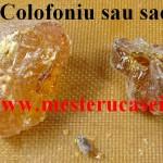 Colofoniu sau sacâz_