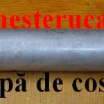 Pompa de cositor_