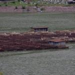 Crescatoria de păstrăvi de pe lacul Bradisor