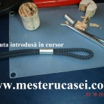 9.Pluta introdusa in cursor_